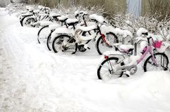 Bicycles covered with snow. Row of bicycles covered with snow royalty free stock photo