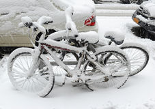 Snow Covered Bicycles After Snowstorm, New York City Royalty Free Stock Photos
