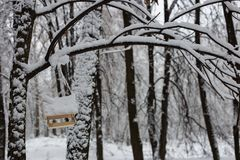Snow covered bird feeder in the park stock images