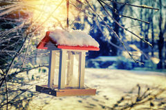 Snow covered bird feeder at sunrise. Nature background Royalty Free Stock Photo