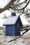 Snow covered blue bird house in a pine tree Royalty Free Stock Photography