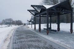 Snow-covered bomen en banken in het stadspark stock fotografie