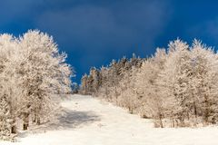Snow-covered bomen tegen de blauwe hemel Royalty-vrije Stock Foto's