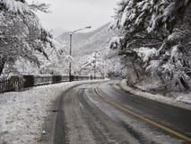 Snow-covered bosweg in Seoraksan-bergen stock afbeeldingen