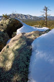 Snow covered boulders. In Prescott National Forest, Arizona, U.S.A Royalty Free Stock Photography