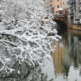 Snow covered branches- river Pegnitz- old town Nuremberg, Germany Royalty Free Stock Photos