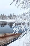 Snow-covered branches of tree on winter lake Royalty Free Stock Photography
