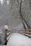 Snow covered bridge Stock Image
