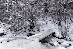 Snow-covered bridge over the river in the winter forest royalty free stock image
