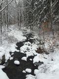Snow Covered Brook Stock Photography