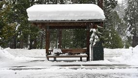 Snow Covered Bus Stop. With snow falling during blizzard stock footage