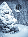 Snow covered bush against wall with window Stock Photo