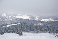 Snow-covered Carpathian mountains foggy winter morning. Ukraine Royalty Free Stock Photography