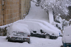 Snow-covered Cars and Vegetation Stock Photography