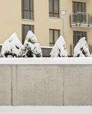 Snow covered cement wall, bushes and ground. In the yard Royalty Free Stock Photos