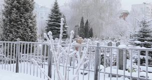 Snow covered cemetery. Snow-covered trees and a road along a small cemetery stock video footage