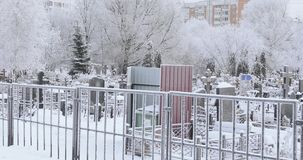 Snow covered cemetery. Snow-covered trees and a road along a small cemetery stock video