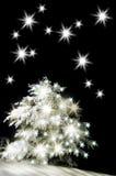 Snow-covered christmas tree stock photo