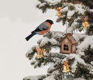 Festive decorations of Christmas trees and  bullfinch. Mass prod Royalty Free Stock Image