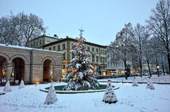 Snow-covered Christmas tree in city park by dusk royalty free stock images