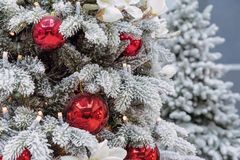 Snow-covered Christmas tree decorated with red balls and a garland.  royalty free stock images