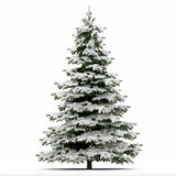 Snow covered Christmas tree. Illustration of snow covered Christmas tree isolated on white background Stock Photos