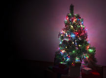 Snow Covered Christmas Tree with Multi Colored Lights Stock Image