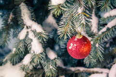 Snow covered Christmas tree and a red ball Royalty Free Stock Photo