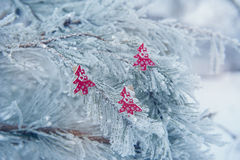 On the snow-covered Christmas tree toys Royalty Free Stock Photography