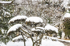 Snow covered Circular canopy Royalty Free Stock Image