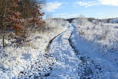 Snow covered country lane through a meadow in winter, seasonal landscape with bue sky stock photography