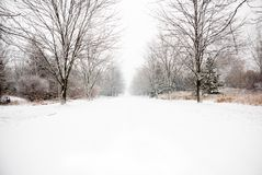 Snow covered country road Royalty Free Stock Photography