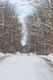 Snow covered Country road on winter day Royalty Free Stock Images