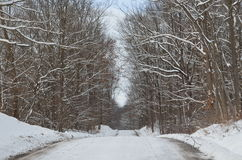 Snow covered Country road on winter day Stock Photo