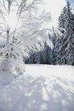 Snow covered country road Stock Photography