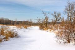 Snow Covered Creek in the Prairie Royalty Free Stock Photos