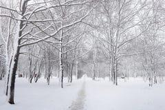 Snow-covered de winterpark en banken Park en pijler voor het voeden Stock Foto