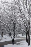 Snow-covered de winterpark en banken Park en pijler voor het voeden Royalty-vrije Stock Fotografie