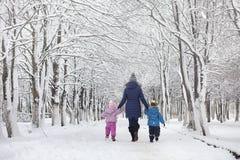 Snow-covered de winterpark en banken Park en pijler voor het voeden Royalty-vrije Stock Afbeeldingen