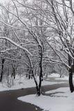Snow-covered de winterpark en banken Park en pijler voor het voeden Royalty-vrije Stock Afbeelding