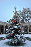 Snow-covered decorative Christmas tree outside stock photos