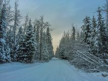 Snow covered road Royalty Free Stock Photo