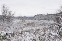 Snow covered Dug Mountain view from Speculator, NY Stock Image