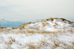 Snow covered dunes Stock Photos