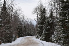 Snow covered tree lined road  Stock Images