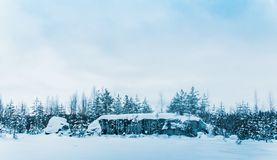 Snow-covered expanses of Karelia royalty free stock images