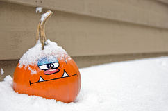 Snow covered fall pumpkin Stock Image