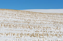 Snow Covered Farm Land Stock Photography