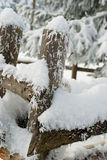 Snow covered fence. Closeup of snow covered wooden fence with trees in background Stock Photos