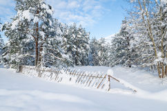 Snow-covered fence in the countryside.  Estonia Stock Images